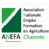Logo anefa zone libelle vectorise
